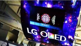 Bảng hiệu OLED lớn nhất thế giới