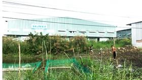 Khu nhà xưởng Công ty TNHH Xây dựng thương mại Khiêm Khải xây dựng chỉ để cho thuê