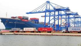 Tàu biển Việt Nam đảm nhận 100% vận tải nội địa container