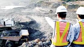 LHQ đánh giá cao Indonesia bảo vệ than bùn