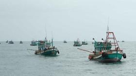 Không còn việc đánh bắt thủy hải sản trái phép