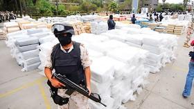 Guatemala bắt giữ 3 tấn cocaine