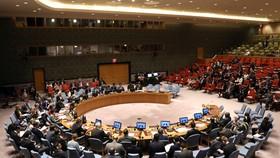 Phiên họp của Hội đồng Bảo an Liên hợp quốc. Ảnh: Reuters