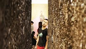 Họa sĩ Phạm Trần Việt Nam tại triển lãm