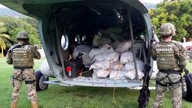 Mexico thu giữ gần 2 tấn cocaine