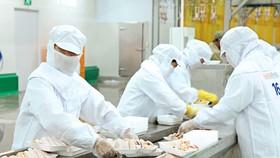 Công ty TNHH San Hà tăng sản lượng thêm 20% so với ngày thường