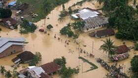 Lũ lụt hoành hành Indonesia, ít nhất 59 người chết
