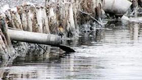 Phát hiện doanh nghiệp chế biến hải sản lén lút xả thải ra môi trường