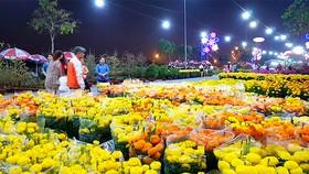 Khách tham quan gian hàng hoa tại chợ Hoa xuân Bình Điền 2018