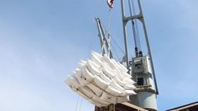 Hàn Quốc viện trợ 10.000 tấn gạo cho các tỉnh miền Trung bị thiệt hại do thiên tai
