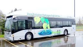 Costa Rica triển khai hệ thống xe buýt xanh