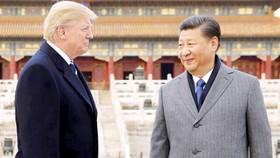 Tổng thống Mỹ Donald Trump và Chủ tịch Tập Cận Bình trong chuyến thăm Trung Quốc tháng 11-2017
