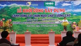 Khởi công dự án cánh đồng cỏ chăn nuôi chất lượng cao. Ảnh: Bích Hồng/BNEWS/TTXVN