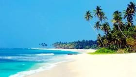 Một bãi biển ở Sri Lanka