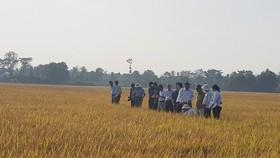 Thủ tướng đối thoại với nông dân lần thứ 2