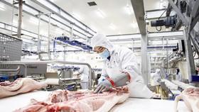 Công ty CP Masan MEATLife xây dựng tổ hợp chế biến thịt heo sạch tại Long An để phục vụ thị trường miền Nam