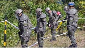 Các binh sỹ Hàn Quốc dò mìn trong Khu phi quân sự. Ảnh: Reuters