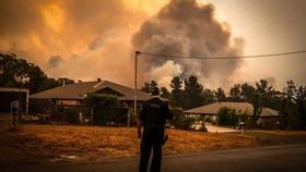 Khói cháy rừng gây ô nhiễm tại Australia. Ảnh: Bloomberg