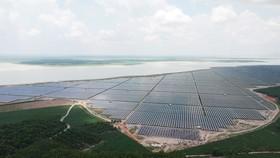 Điện mặt trời tại hồ Dầu Tiếng, tỉnh Tây Ninh. Ảnh: CAO THĂNG
