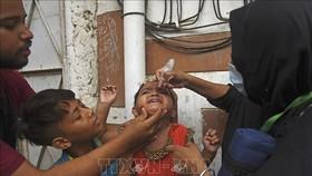 Cảnh báo nhiễm độc chì ở trẻ em trên thế giới