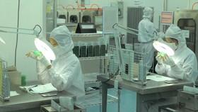 Sản xuất IC bán dẫn tại Công ty MTEX (Nhật Bản) trong KCX Tân Thuận, TPHCM. Ảnh: CAO THĂNG