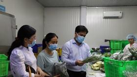 Ông Triệu Đỗ Hồng Phước, Chủ tịch UBND huyện Nhà Bè giám sát một cơ sở sản xuất nông nghiệp