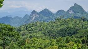 5 triệu USD quản lý bảo tồn đa dạng sinh học ở Quảng Bình