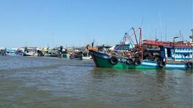 Đồng bằng sông Cửu Long: Phát triển bền vững nghề cá