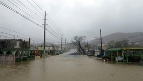Puerto Rico faces more floods after Maria 'obliteration'