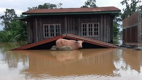 Flooding in Attapeu