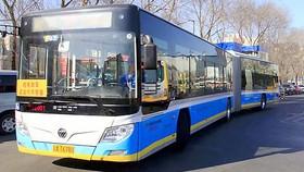 Xanh hóa hệ thống xe buýt