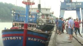 Trung tâm Phối hợp tìm kiếm cứu nạn hàng hải Việt Nam (Vietnam MRCC) đã đưa 19 ngư dân vào Cảng Cửa Lò (Nghệ An) an toàn