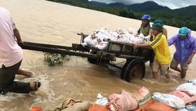 Người dân xã Nghi Văn (Nghi Lộc, Nghệ An) nỗ lực ngăn nước tràn qua đập Gà