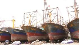 19 chủ tàu vỏ thép bị hư hỏng yêu cầu bồi thường hơn 36 tỷ đồng