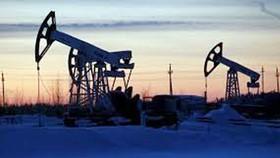 OPEC duy trì cắt giảm sản lượng dầu mỏ