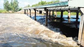 Nước lũ ở Nam bộ vượt báo động 3, miền Bắc vào đợt mưa rét