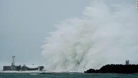 Nhật Bản chi gần 7 triệu USD khắc phục hậu quả bão Hagibis