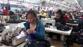 An Giang: Phấn đấu trên 80% lao động nông thôn có việc làm sau khi học nghề