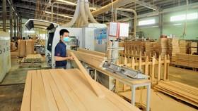 Hơn 1.200 tỷ đồng xây dựng nhà máy chế biến lâm sản tại Vũng Áng