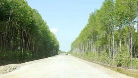 Hơn 1.500 tỷ đồng xây tuyến tránh TP Buôn Ma Thuột