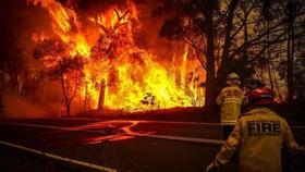 Những đám cháy rừng xảy ra tại miền Đông Australia