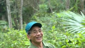 Cựu chiến binh Đinh Ngọc Loan giữ gìn, chăm sóc rừng trầm để giữ hồn cốt quê hương