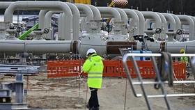 Công trình lắp đặt đường ống trong dự án Dòng chảy phương Bắc 2 tại Lubmin, miền Đông Bắc Đức ngày 26-3-2019. Ảnh: AFP/TTXVN