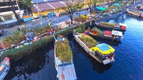 """Chợ hoa tết """"trên bến dưới thuyền"""" ở Bến Bình Đông (quận 8) cần được bảo tồn và phát huy giá trị của di sản sông nước. Ảnh: DŨNG PHƯƠNG"""