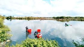 Khu rừng ngập mặn còn sót lại của TP Phan Thiết, tỉnh Bình Thuận