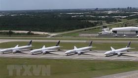 Máy bay của hãng hàng không United Airlines tại sân bay quốc tế George Bush, bang Texas, Mỹ. Ảnh: TTXVN