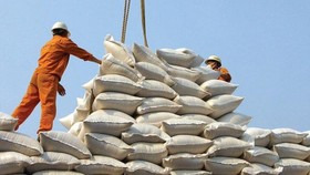 Gỡ khó trong thu mua lúa gạo tạm trữ