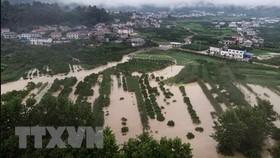 Mưa lũ nghiêm trọng tại Đông Bắc Á