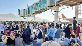 Người dân đổ xô tới sân bay Kabul. Ảnh: CNBC