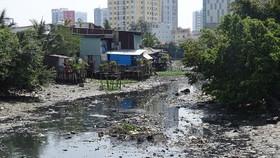 Nhiều người dân đang sống với nhà lụp xụp trên rạch Xuyên Tâm, quận Bình Thạnh